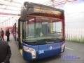 Bredamenarinibus04