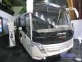 Caetanobus04