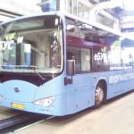 bgd-elektrobus