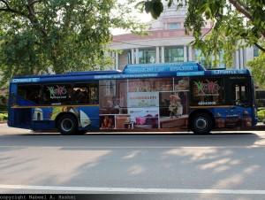 TATA Hispano niskopodni autobus. ©Nabeel A. Hashml, Flickr