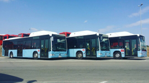 Prethodno su autobusi saobraćali za austrijski Postbus. © Niš-ekspres
