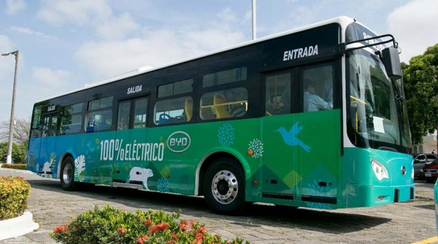 BYD_Guayaquil_1