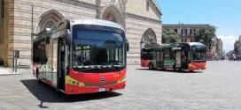 Električni BYD midibusi za Siciliju