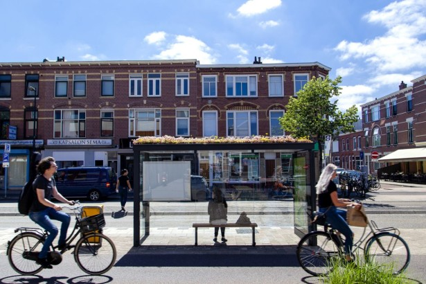 Utrecht_bee-friendy_station_03