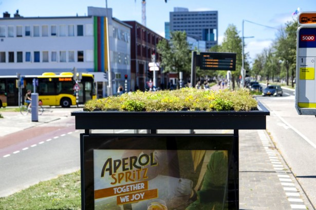Utrecht_bee-friendy_station_04