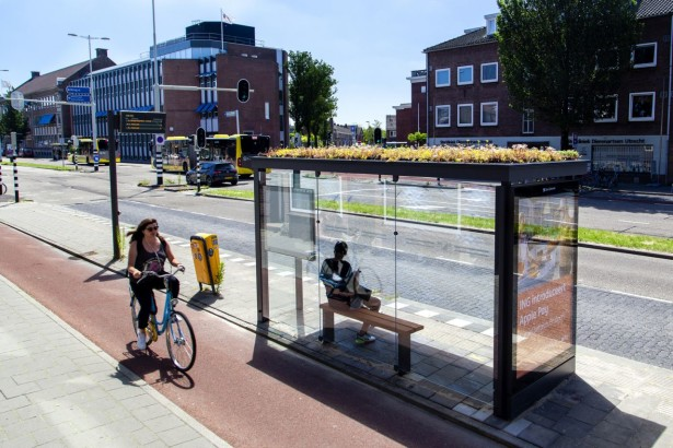 Utrecht_bee-friendy_station_06